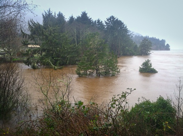 Photo of King Tide flooding at Netarts Bay, by Tracey Schmidt.