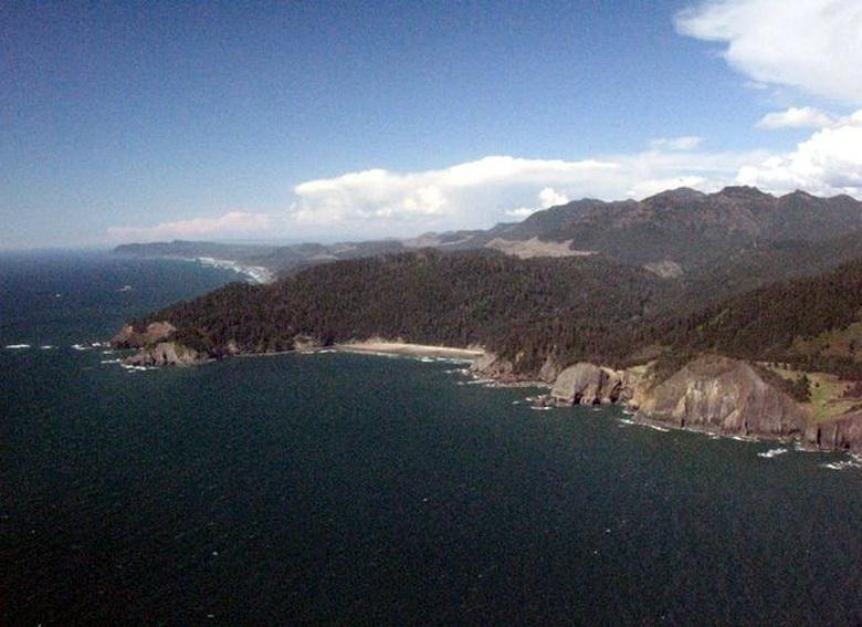 Aerial view of Cape Falcon.\Photo by Alex Derr.