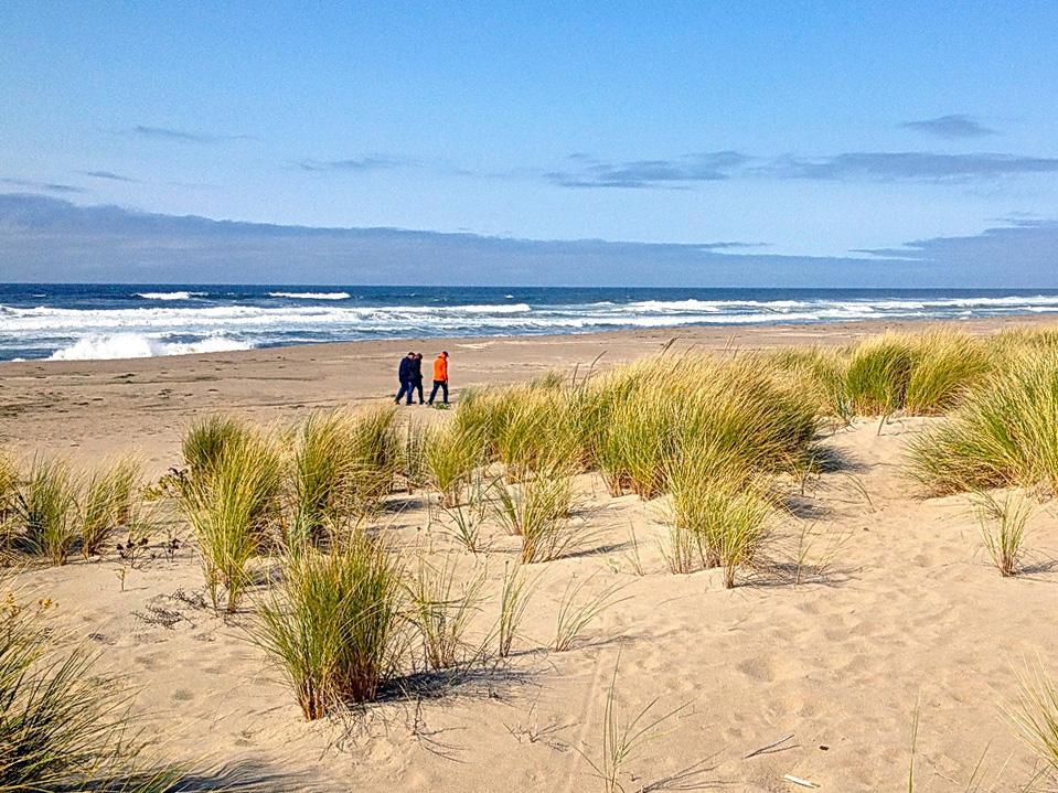 Photo of Horsfall Beach by Dina Pavlis.