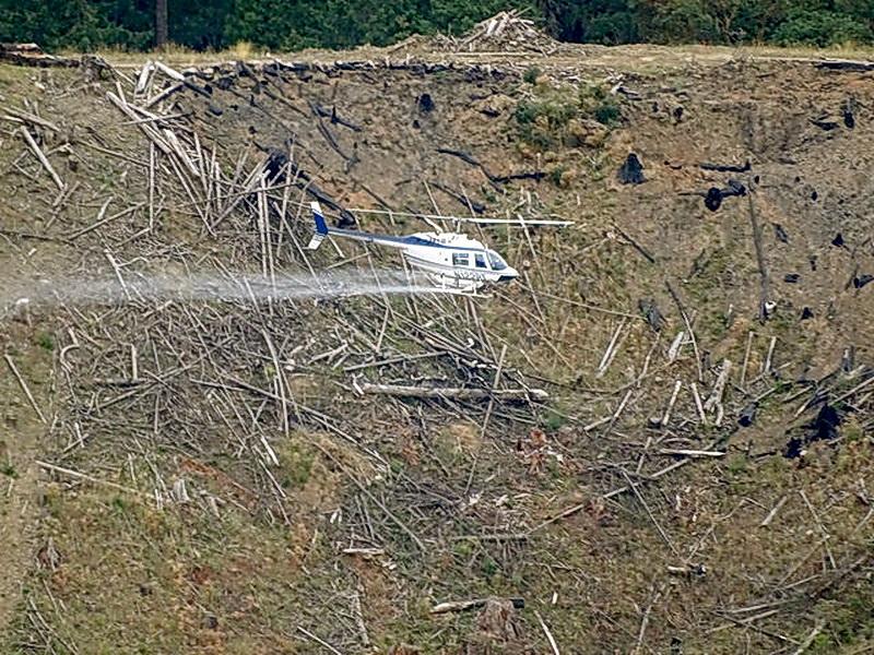 Helicopter spraying of pesticides.\Photo courtesy of Oregon Wild.