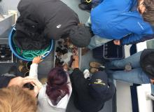 Photo of students examining scientific speciments, courtesy of Ocean Inquiry.