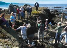 CoastWatch training on rocky shore habitats.\Photo by Daniel Anderson.