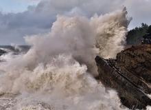 Rising seas at Shore Acres