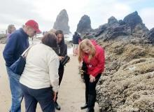 Tidepool instruction at Haystack Rock.\Photo by Melissa Keyser/HRAP.