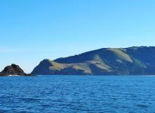 Cascade Head Marine Reserve coastline.