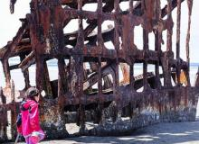 The wreck of the Peter Iredale. Photo by H. Kroggins.