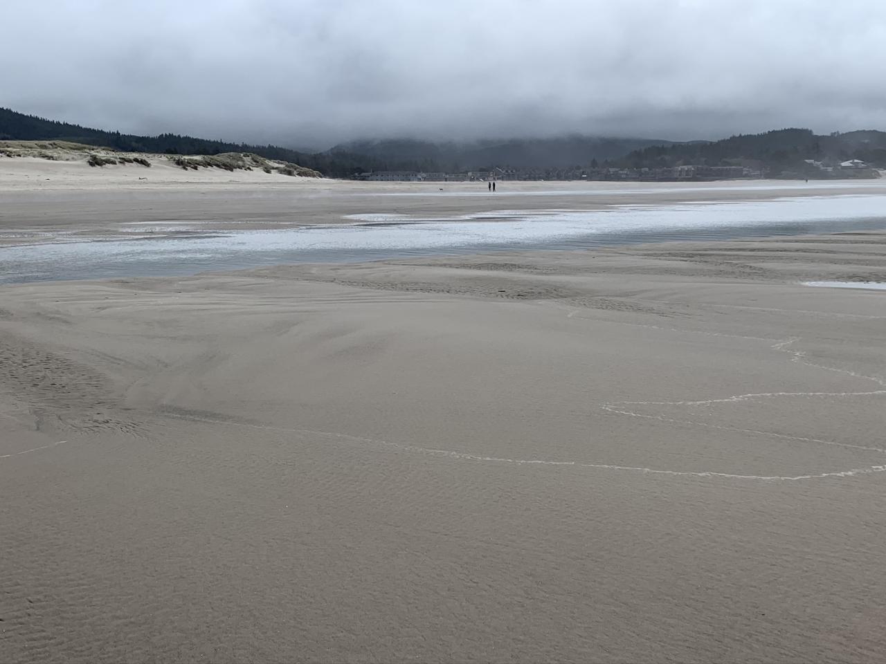 Looking south on Champman Point, sandbars/tidepools