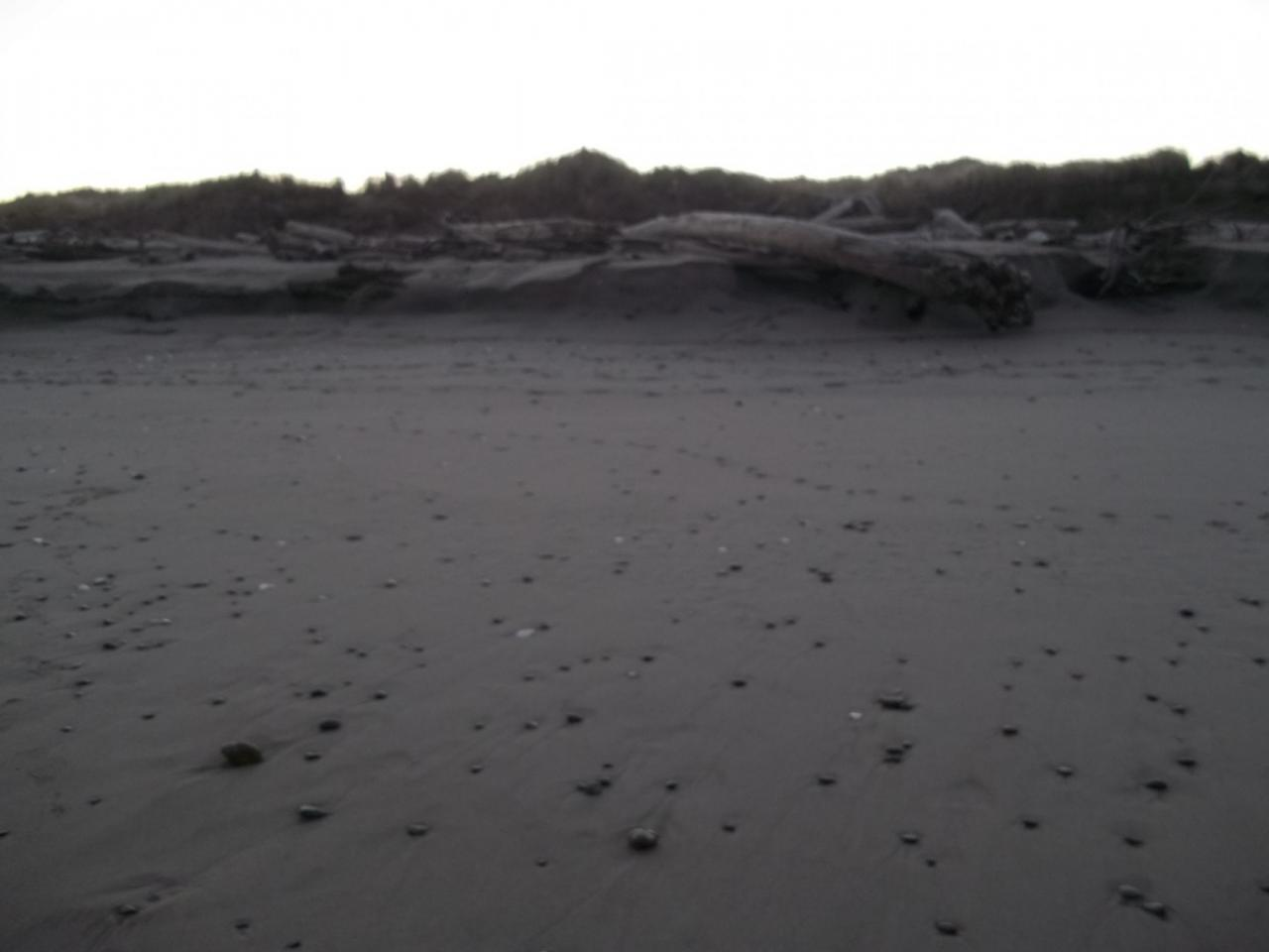 Beach north of Coquille River