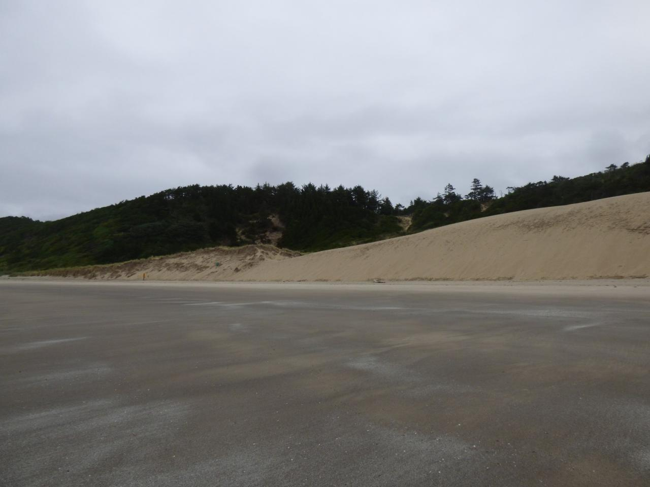 Photo of Cape Kiwanda, north side.
