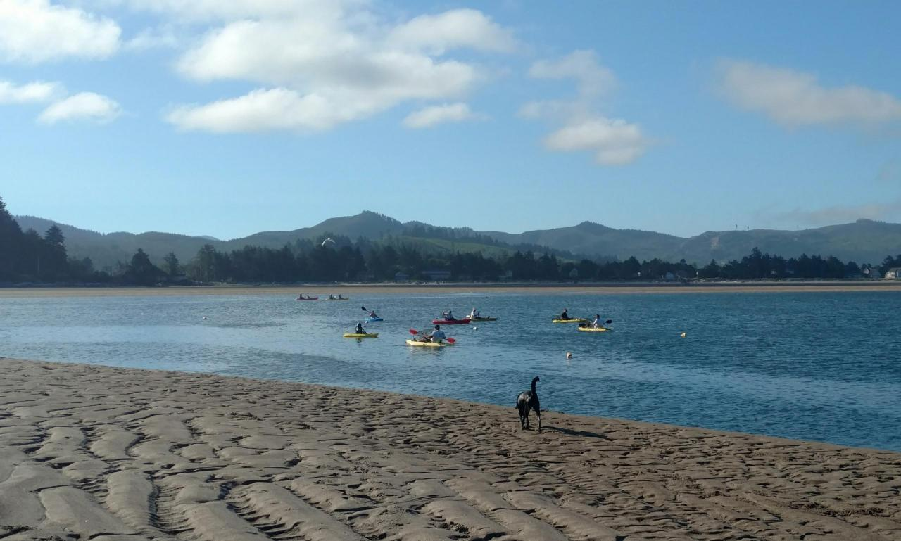 Kayakers crabbing in Siletz bay