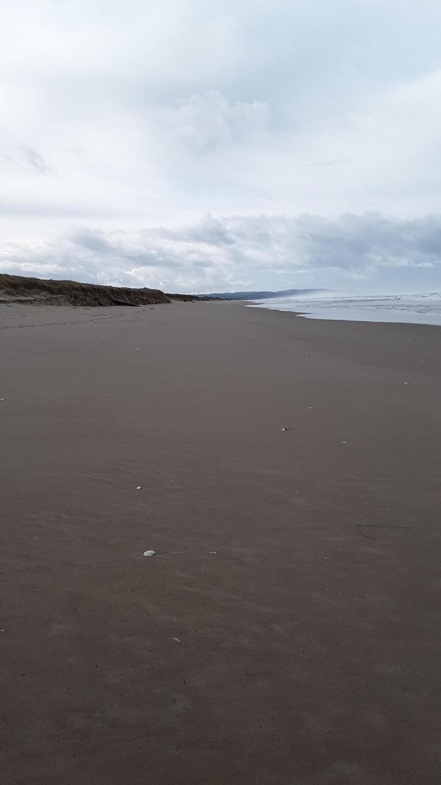 Beach view to the south.