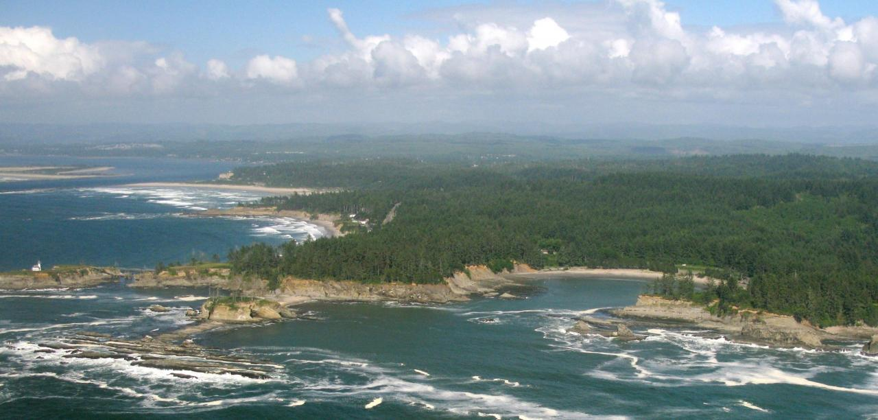 Photo of Cape Arago area.