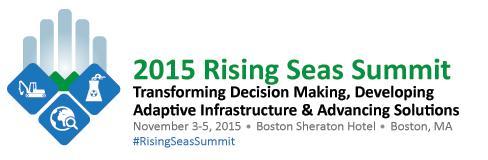 Rising Seas Summit meeting banner.