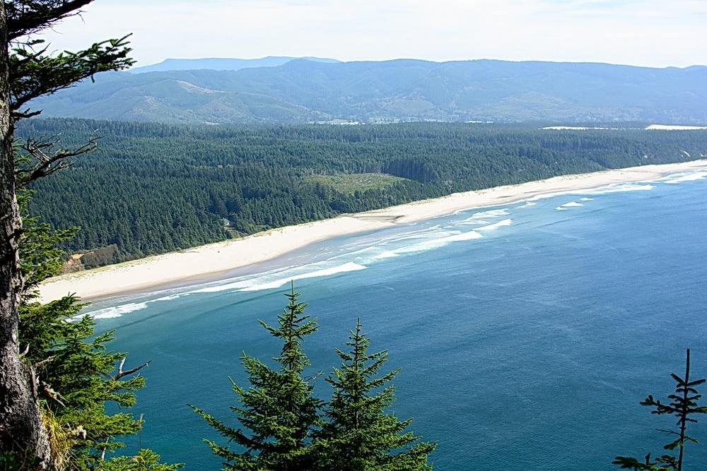 View from Cape Lookout, overlooking clearcut forest on Boy Scout land proposed for further development.  Photo by Alex Derr.
