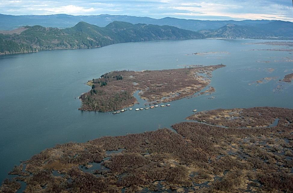 Woody Island in the Columbia River estuary.