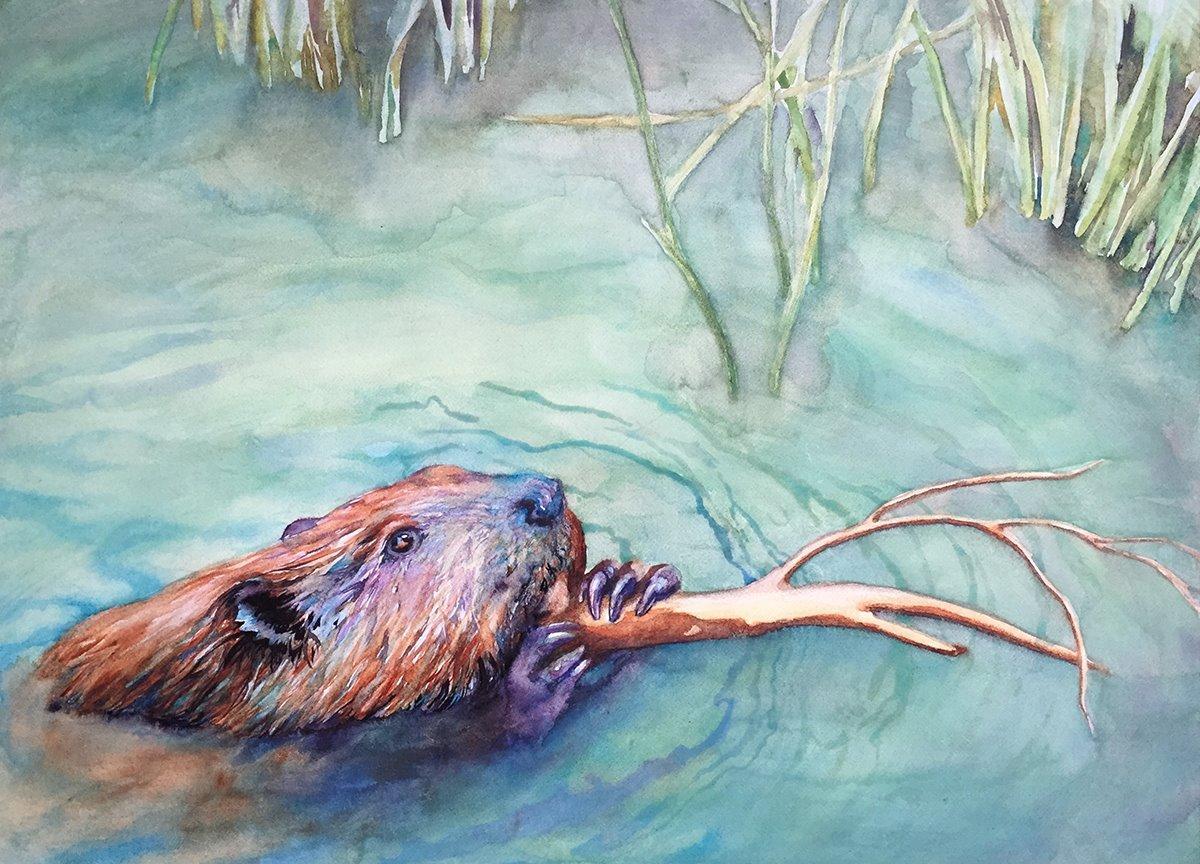 Busy Beaver by Rene Eisenbart.