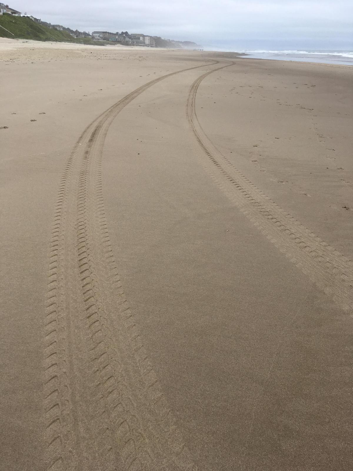 Car tracks on shoreline