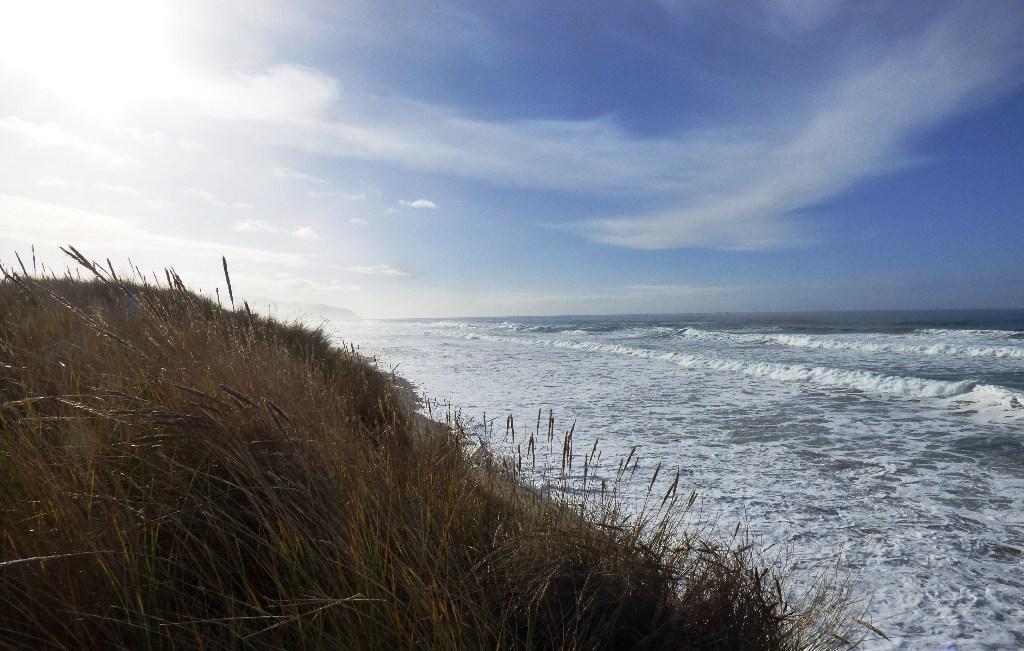 King Tide - waves hitting the base of the dune Bob Straub Beach Kiwanda State Park
