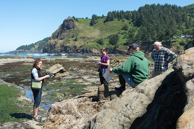 Volunteer training at Otter Rock.  Photo by Alex Derr.