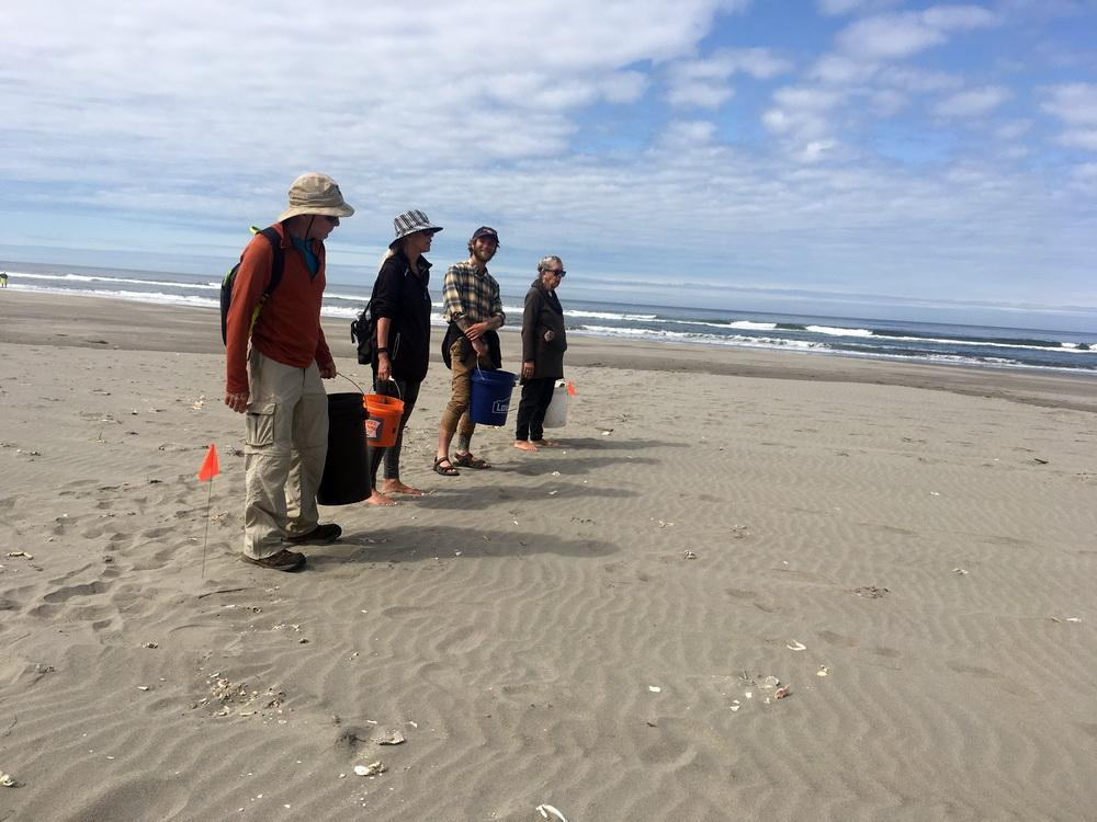 Starting a marine debris survey at Fort Stevens.\Photo by Jesse Jones.