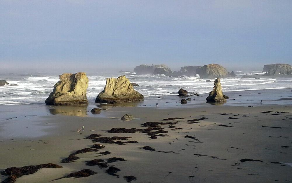 Bandon shoreline.\Photo by Steve Garrett.