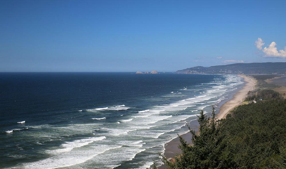 Oregon's ocean:  the view north from Cape Lookout.  Photo by Dennis Hoffman.