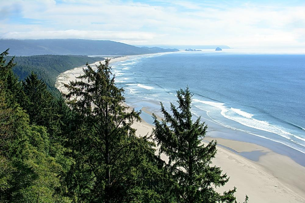 Ocean viewed from Cape Lookout. Photo by Alex Derr.