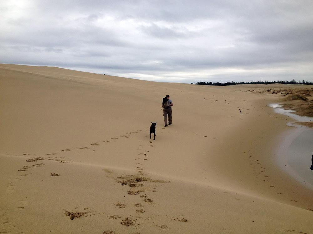 Lone hiker in the Oregon Dunes.\Photo by Dina Pavlis.