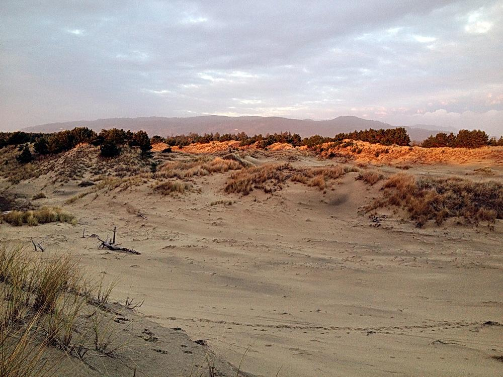 Late light in the Dunes.\Photo by Dina Pavlis.