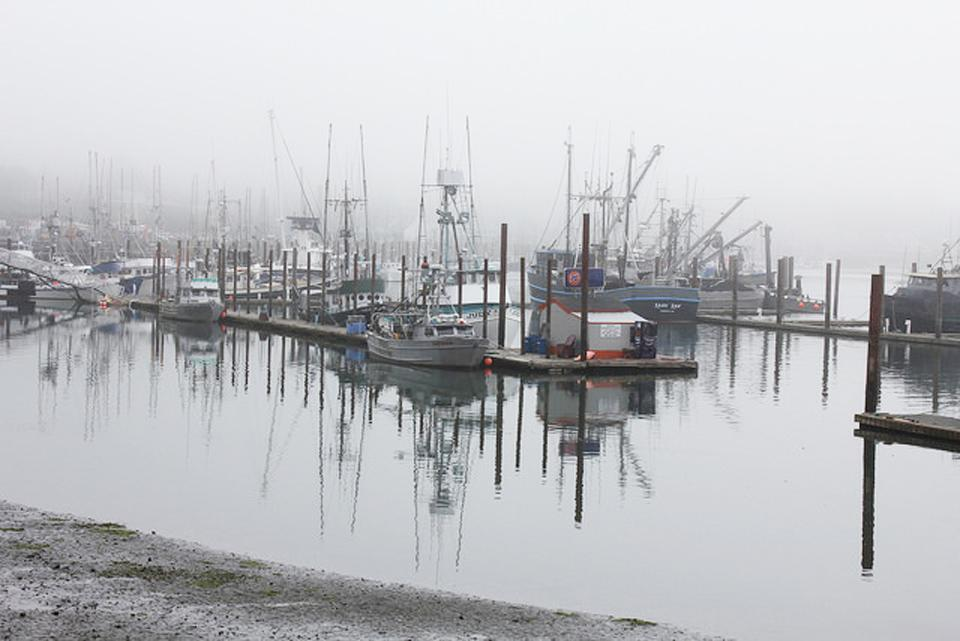 Fishing vessels in the harbor at Newport. Photo by Sara Schrieber.