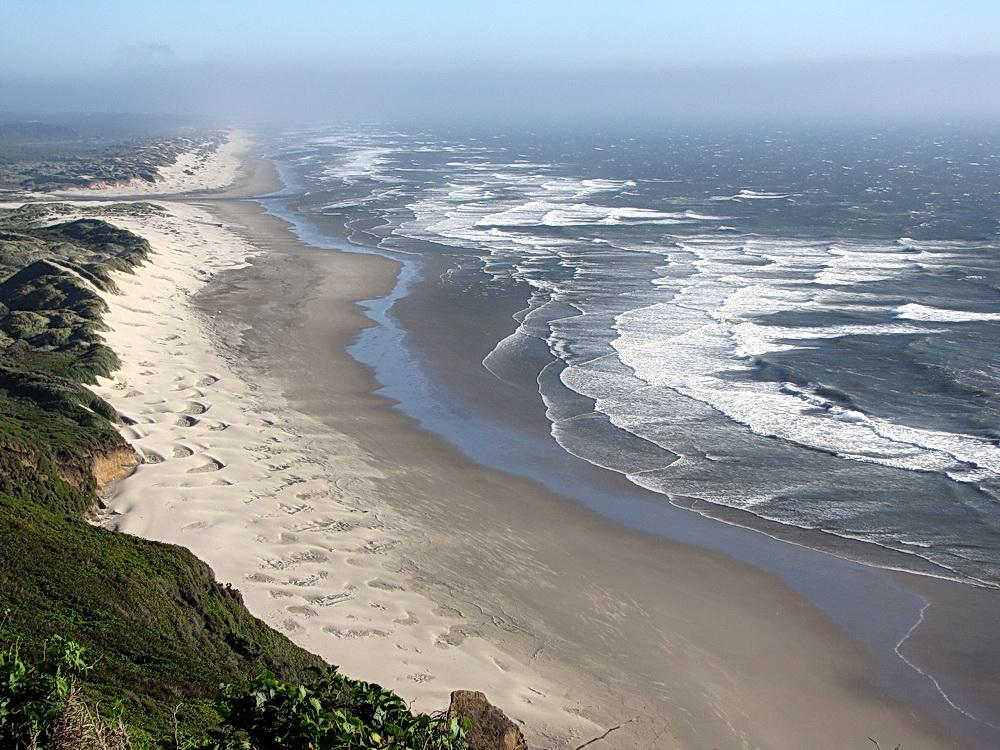 Help us communicate a wide view of coastal conservation.  Photo by Sonja Peterson.