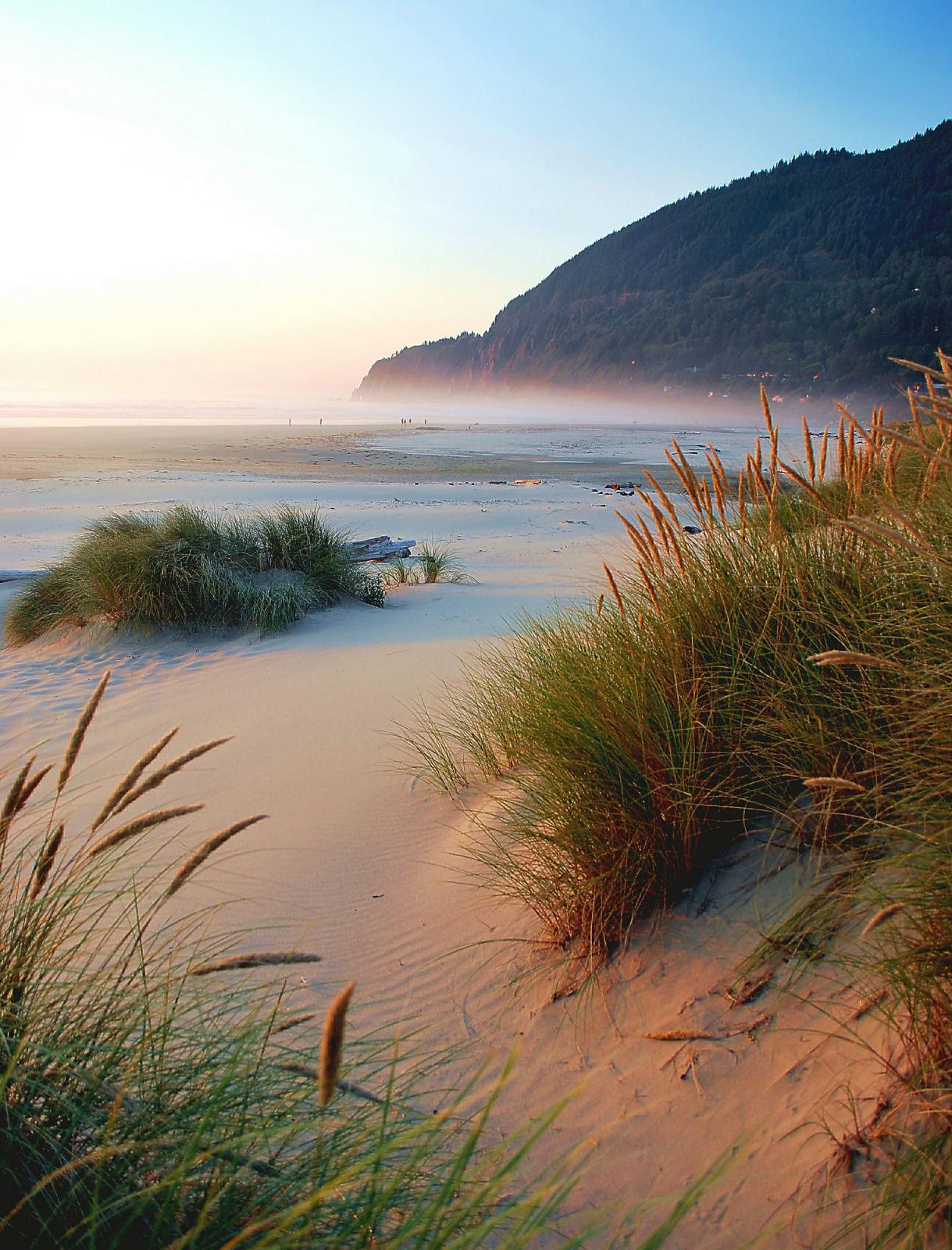 Neahkahnie Beach.