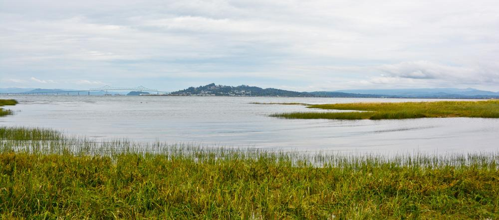 Columbia estuary , site of defeated Oregon LNG export facility.  Photo by Tiffany Boothe.