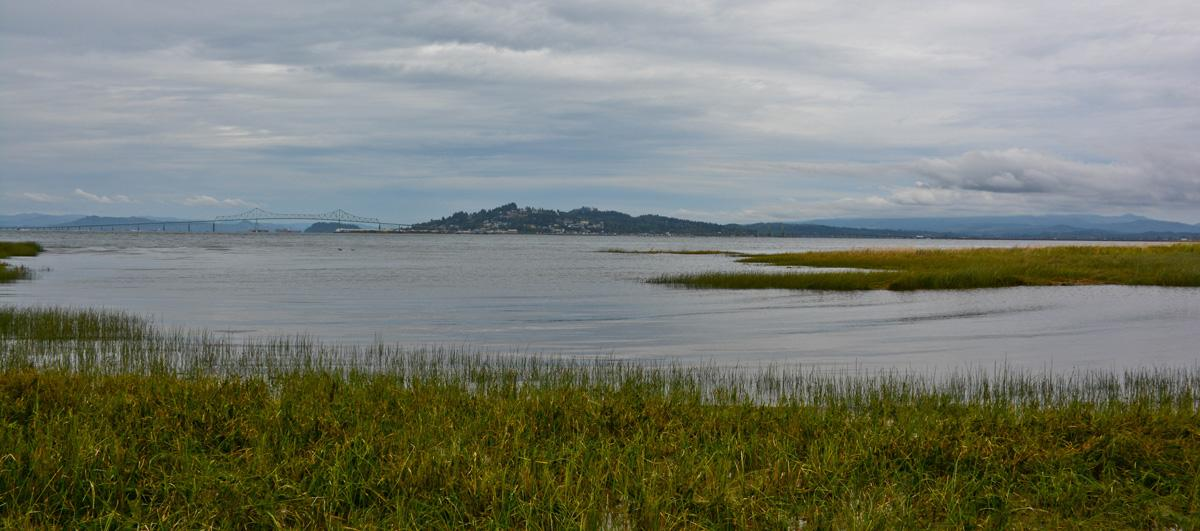 Site of proposed Oregon LNG export terminal. Photo by Tiffany Boothe.