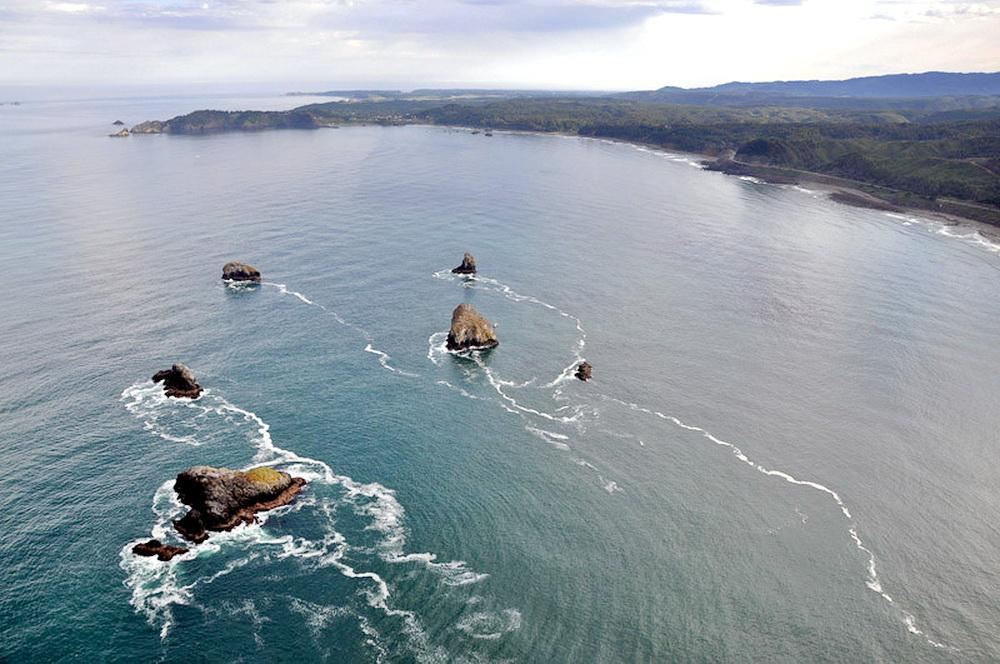 Redfish Rocks Marine Reserve.\Photo courtesy of ODFW.