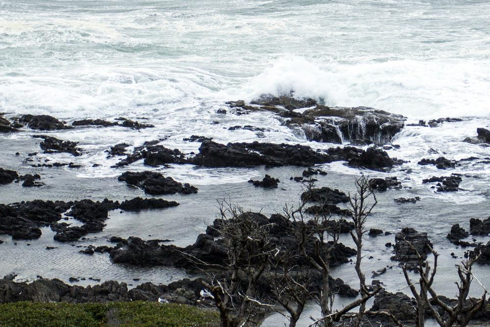 Rocky shore area at Thor's Well, south of Cape Perpetua.\Photo by Bonnie Moreland.