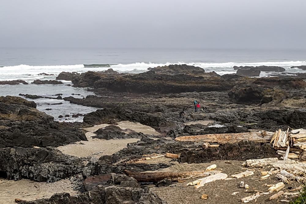 Rocky shores at Yachats.\Photo by Rena Olson.