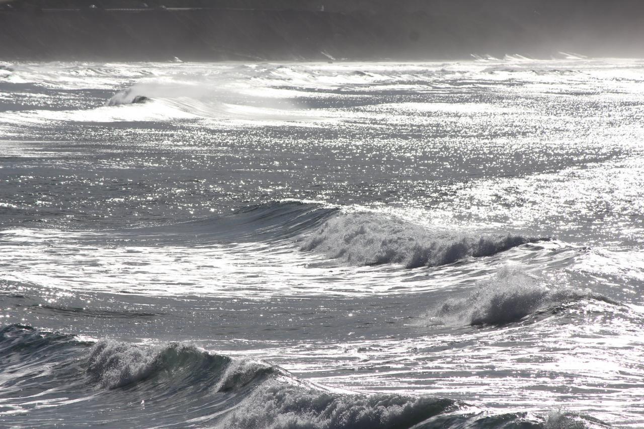 Seascape.\Photo by Sara Schreiber.