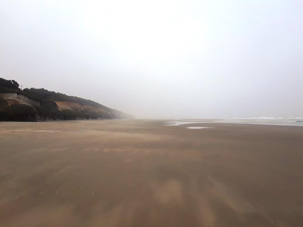 CoastWatch north 210