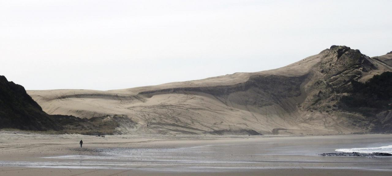 north side of dune