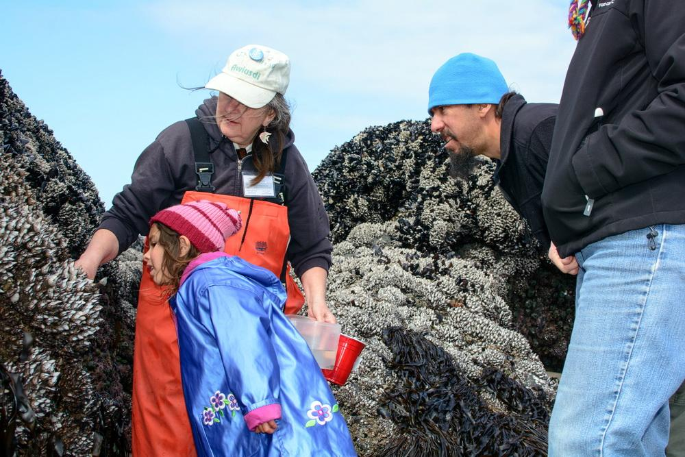 Fawn Custer teaching about rocky shores.\Photo by Alex Derr.