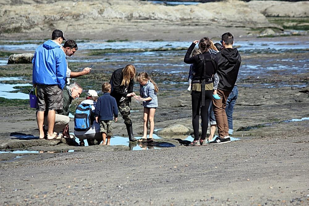 Investigating tidepools at Otter Rock.  Photo by Sara Schreiber.