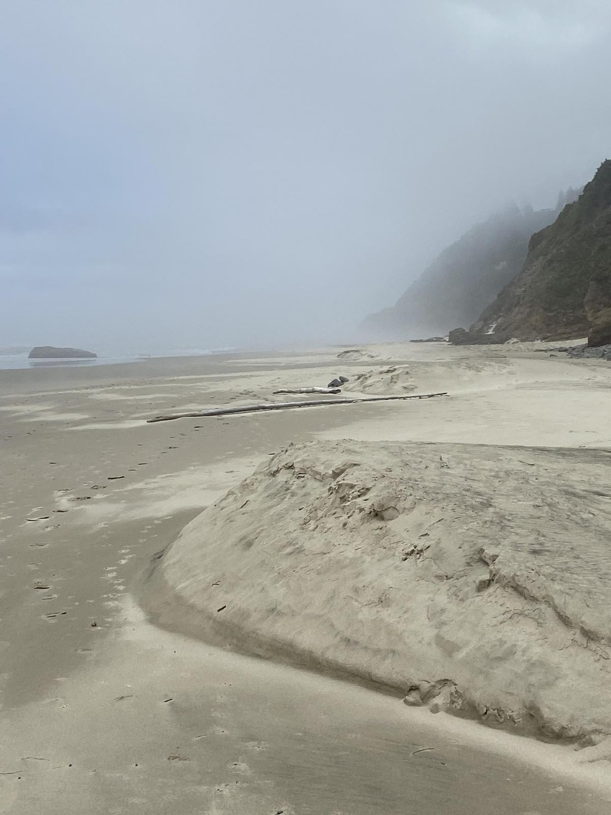 Dunes present on beach