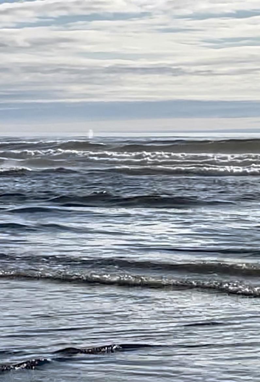 Whale spout visible near center if horizon