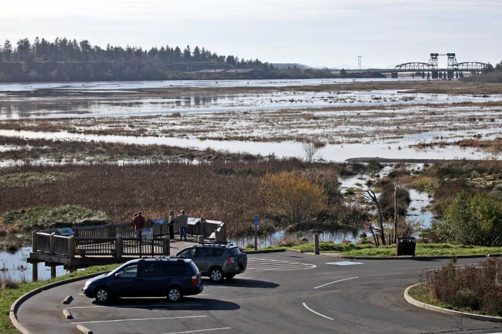 Restoration of Bandon Marsh.\ Photo by Dave Ledig.