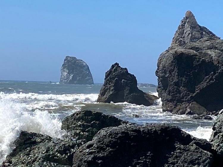 Rocky intertidal at Blacklock Point.  Efforts to protect this area are ongoing.\Photo by Larry Basch.