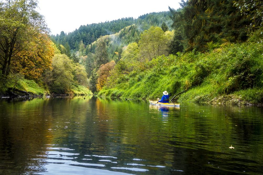 Forest and water scene, with kayak\Photo by Dennis White.