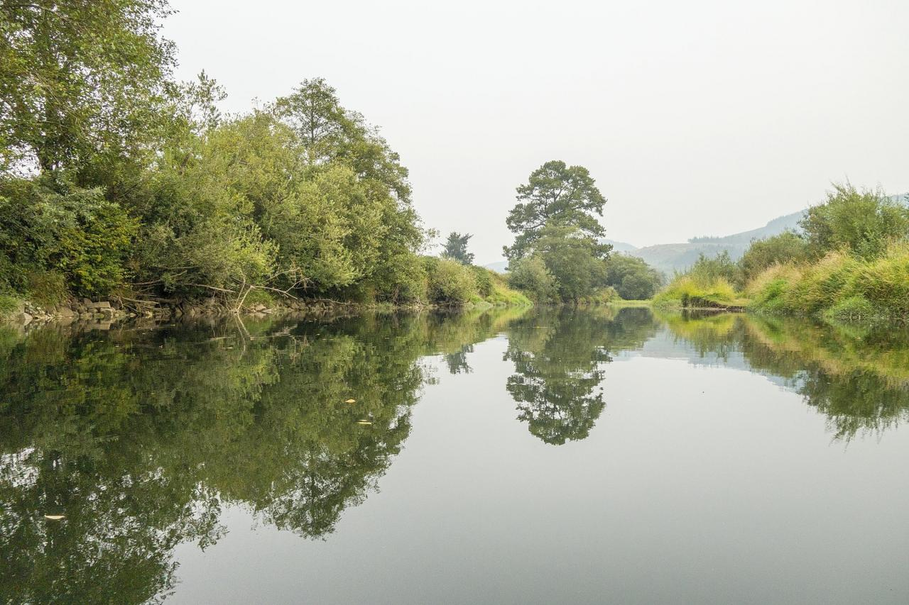 Nestucca River scene.\Photo by Dennis White.