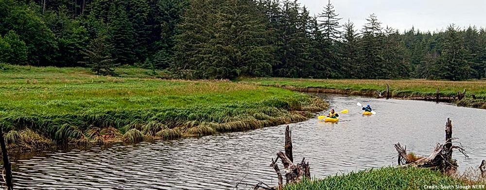 Kayakers on South Slough.\Photo courtesy of South Slough NERR.