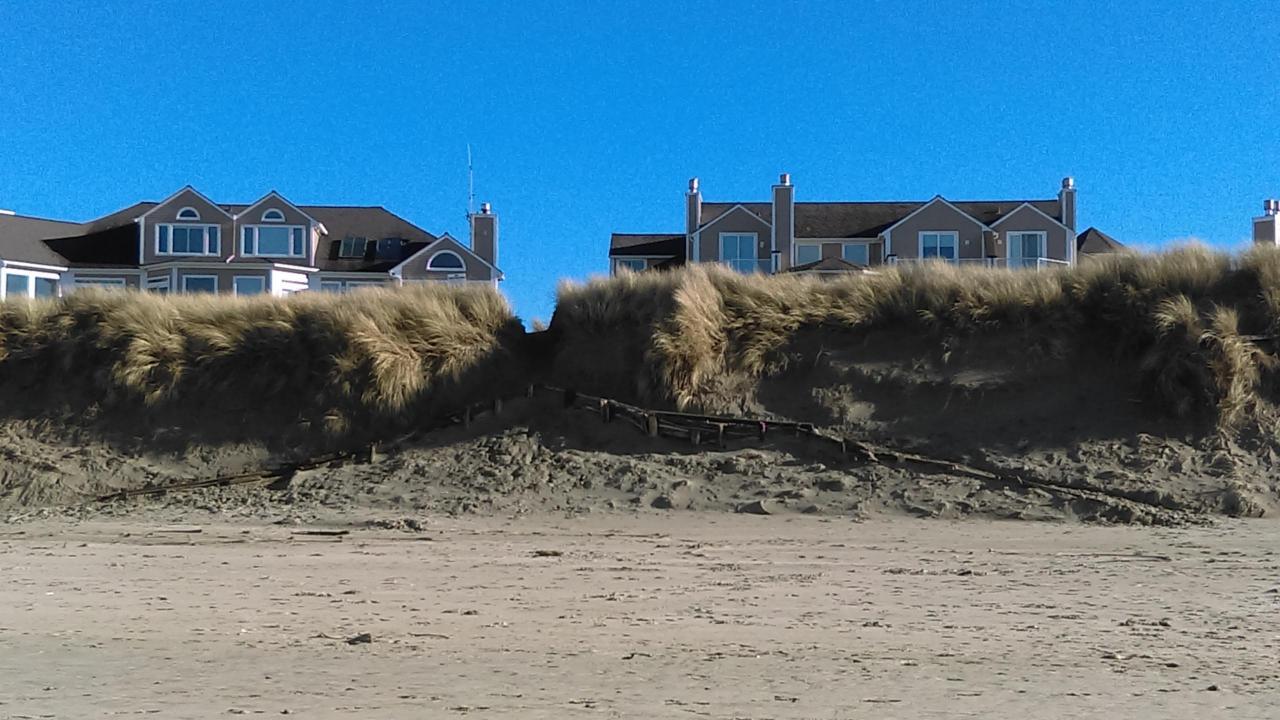 Beach access through dune.